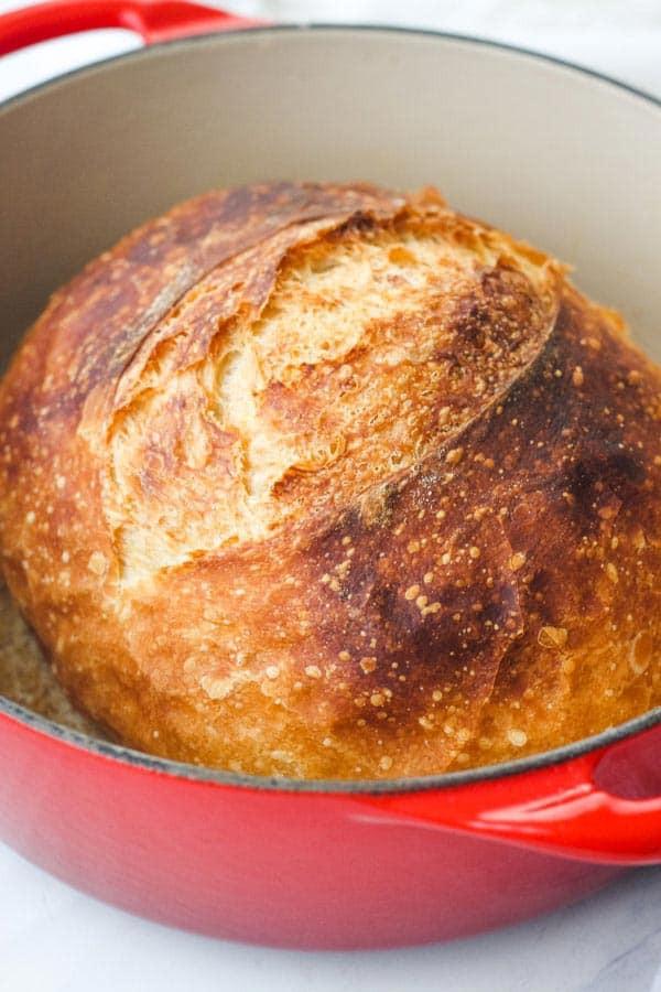 Small No Knead Bread (Easy Dutch Oven Recipe)