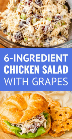Chicken Salad With Grapes And Pecans (6 Ingredients!)