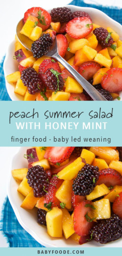 Peach Summer Fruit Salad with Mint & Honey Dressing