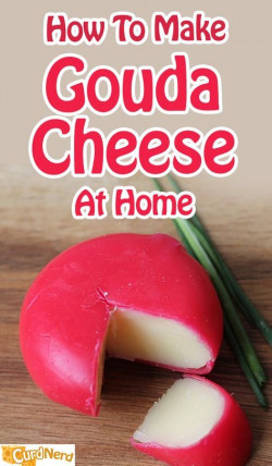 How To Make Gouda Cheese at Home