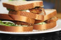 Easy Chicken Cutlets - 5 Ingredients