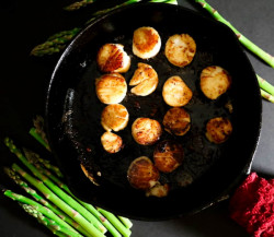 Pan-Fried Scallops